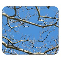 Leafless Tree Branches Against Blue Sky Double Sided Flano Blanket (Small)