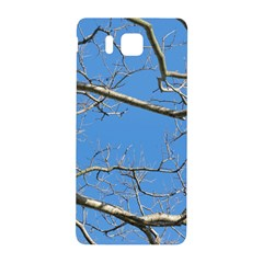 Leafless Tree Branches Against Blue Sky Samsung Galaxy Alpha Hardshell Back Case
