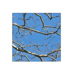 Leafless Tree Branches Against Blue Sky Satin Bandana Scarf