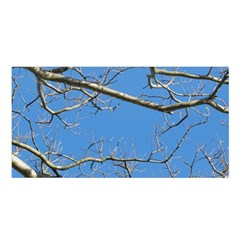 Leafless Tree Branches Against Blue Sky Satin Shawl