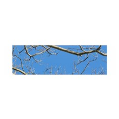 Leafless Tree Branches Against Blue Sky Satin Scarf (Oblong)