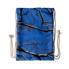 Leafless Tree Branches Against Blue Sky Drawstring Bag (Small)