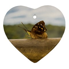 Butterfly against Blur Background at Iguazu Park Ornament (Heart)