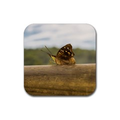 Butterfly against Blur Background at Iguazu Park Rubber Square Coaster (4 pack)