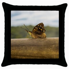 Butterfly against Blur Background at Iguazu Park Throw Pillow Cases (Black)