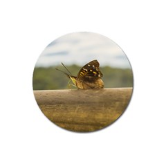 Butterfly against Blur Background at Iguazu Park Magnet 3  (Round)