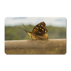 Butterfly against Blur Background at Iguazu Park Magnet (Rectangular)