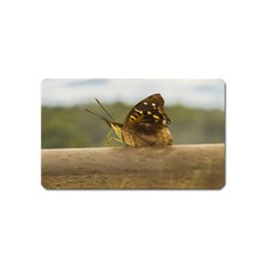 Butterfly against Blur Background at Iguazu Park Magnet (Name Card)
