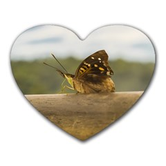 Butterfly against Blur Background at Iguazu Park Heart Mousepads