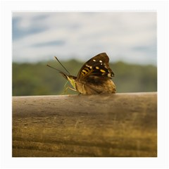 Butterfly against Blur Background at Iguazu Park Medium Glasses Cloth (2-Side)