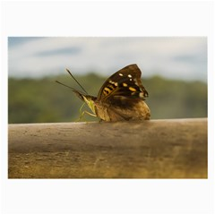 Butterfly against Blur Background at Iguazu Park Large Glasses Cloth (2-Side)