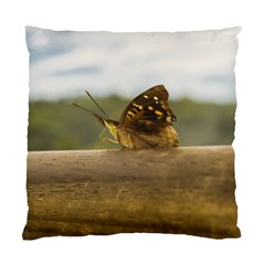 Butterfly against Blur Background at Iguazu Park Standard Cushion Cases (Two Sides)