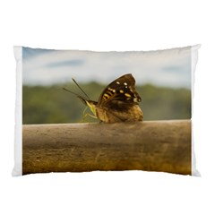 Butterfly against Blur Background at Iguazu Park Pillow Cases