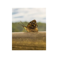 Butterfly Against Blur Background At Iguazu Park Shower Curtain 48  X 72  (small)