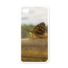 Butterfly against Blur Background at Iguazu Park Apple iPhone 4 Case (White)