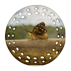 Butterfly against Blur Background at Iguazu Park Round Filigree Ornament (2Side)
