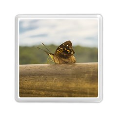 Butterfly against Blur Background at Iguazu Park Memory Card Reader (Square)