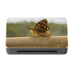 Butterfly Against Blur Background At Iguazu Park Memory Card Reader With Cf