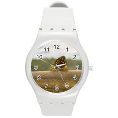 Butterfly against Blur Background at Iguazu Park Round Plastic Sport Watch (M)