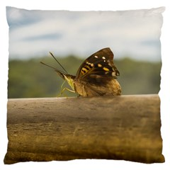 Butterfly against Blur Background at Iguazu Park Large Cushion Cases (One Side)