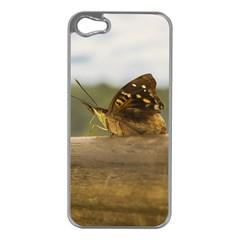 Butterfly against Blur Background at Iguazu Park Apple iPhone 5 Case (Silver)