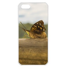 Butterfly against Blur Background at Iguazu Park Apple iPhone 5 Seamless Case (White)