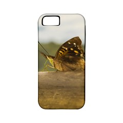 Butterfly against Blur Background at Iguazu Park Apple iPhone 5 Classic Hardshell Case (PC+Silicone)