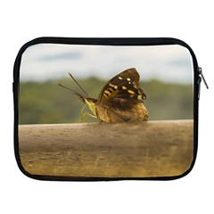 Butterfly against Blur Background at Iguazu Park Apple iPad 2/3/4 Zipper Cases