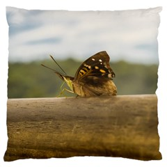 Butterfly against Blur Background at Iguazu Park Large Flano Cushion Cases (One Side)