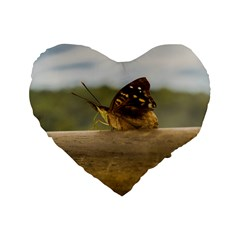 Butterfly against Blur Background at Iguazu Park Standard 16  Premium Flano Heart Shape Cushions