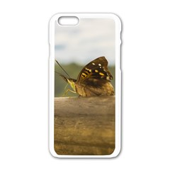 Butterfly Against Blur Background At Iguazu Park Apple Iphone 6/6s White Enamel Case