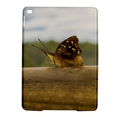 Butterfly Against Blur Background At Iguazu Park Ipad Air 2 Hardshell Cases