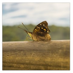 Butterfly against Blur Background at Iguazu Park Large Satin Scarf (Square)