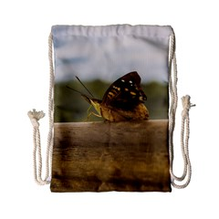 Butterfly Against Blur Background At Iguazu Park Drawstring Bag (small)