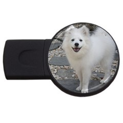 American Eskimo Dog Full USB Flash Drive Round (4 GB)
