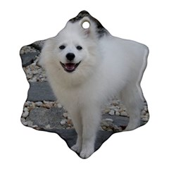American Eskimo Dog Full Snowflake Ornament (2-Side)