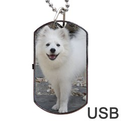 American Eskimo Dog Full Dog Tag Usb Flash (two Sides)