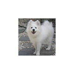 American Eskimo Dog Full YOU ARE INVITED 3D Greeting Card (8x4)