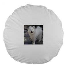 American Eskimo Dog Full Large 18  Premium Round Cushions