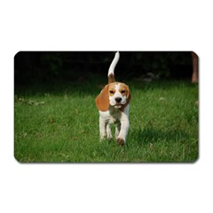 Beagle Walking Magnet (Rectangular)