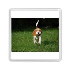 Beagle Walking Memory Card Reader (Square)
