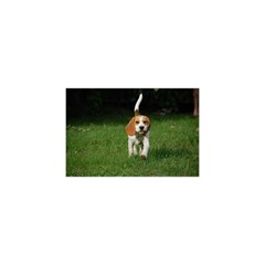 Beagle Walking YOU ARE INVITED 3D Greeting Card (8x4)