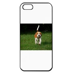 Beagle Walking Apple iPhone 5 Seamless Case (Black)