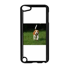 Beagle Walking Apple iPod Touch 5 Case (Black)