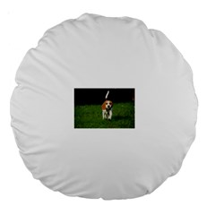 Beagle Walking Large 18  Premium Round Cushions