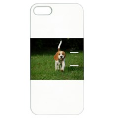 Beagle Walking Apple iPhone 5 Hardshell Case with Stand