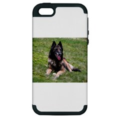 Belgian Tervuren Laying Apple iPhone 5 Hardshell Case (PC+Silicone)
