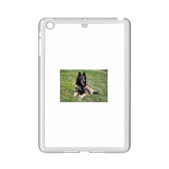 Belgian Tervuren Laying iPad Mini 2 Enamel Coated Cases