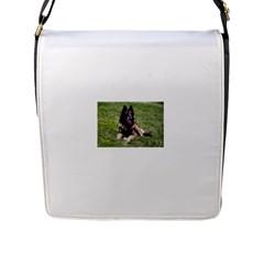 Belgian Tervuren Laying Flap Messenger Bag (L)