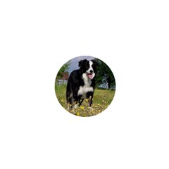 Border Collie Full 3 1  Mini Buttons